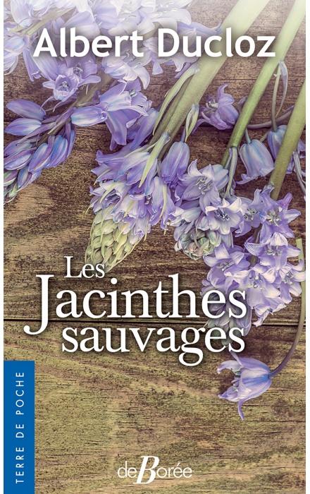 Les jacinthes sauvages